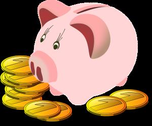 economie-immobilier-cochon